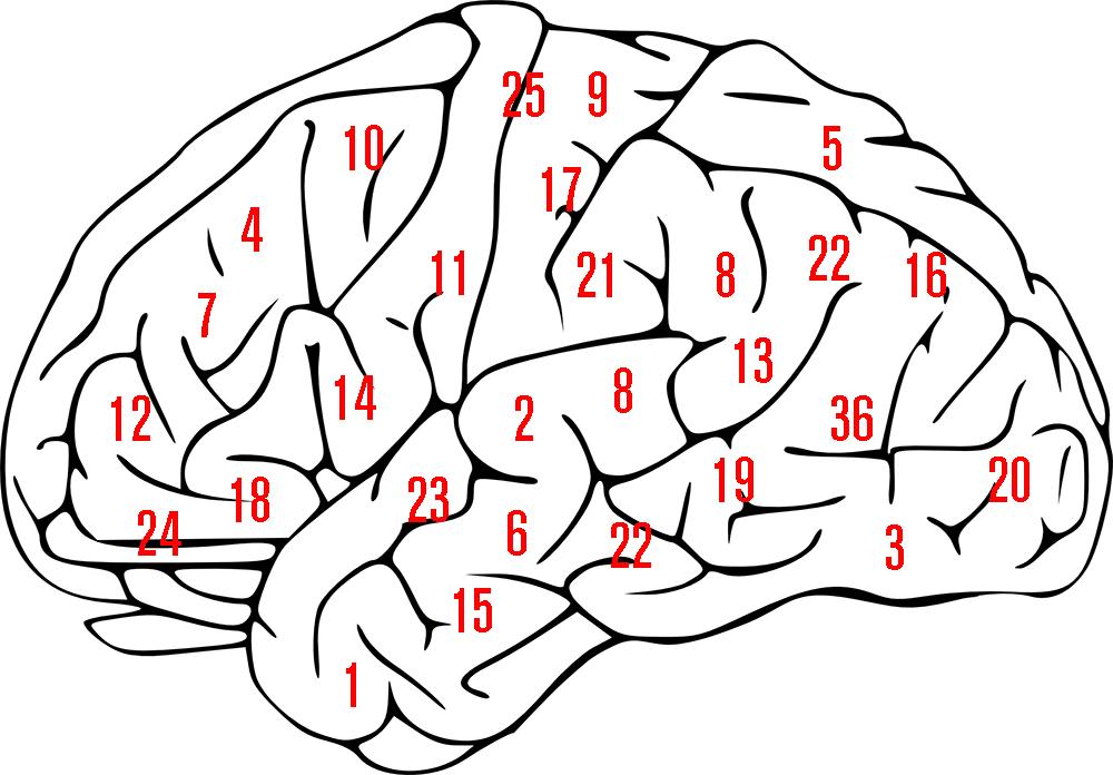 Zahlen-im-Kopf-merken